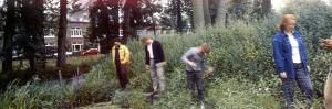 Joke Robaard, Ecozone - Fragment of 301 STEPS, Daylight/Tungsten, Graz 1999
